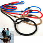 Adjustable Leash Lead Strap Nylon Traction Rope Pet Dog Collar Outdoor Training