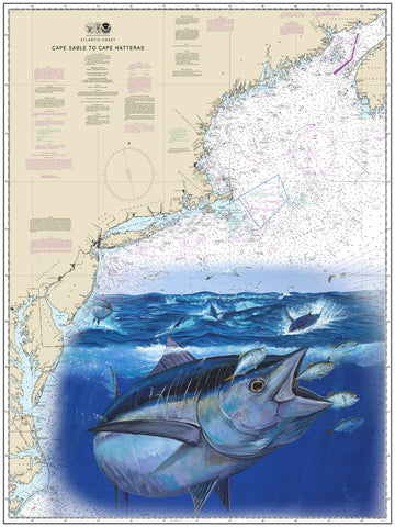 Cape Sable Bluefin Tuna Chart