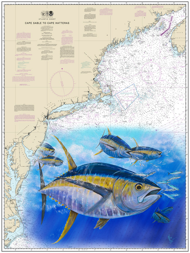 Yellowfin Tuna Chart