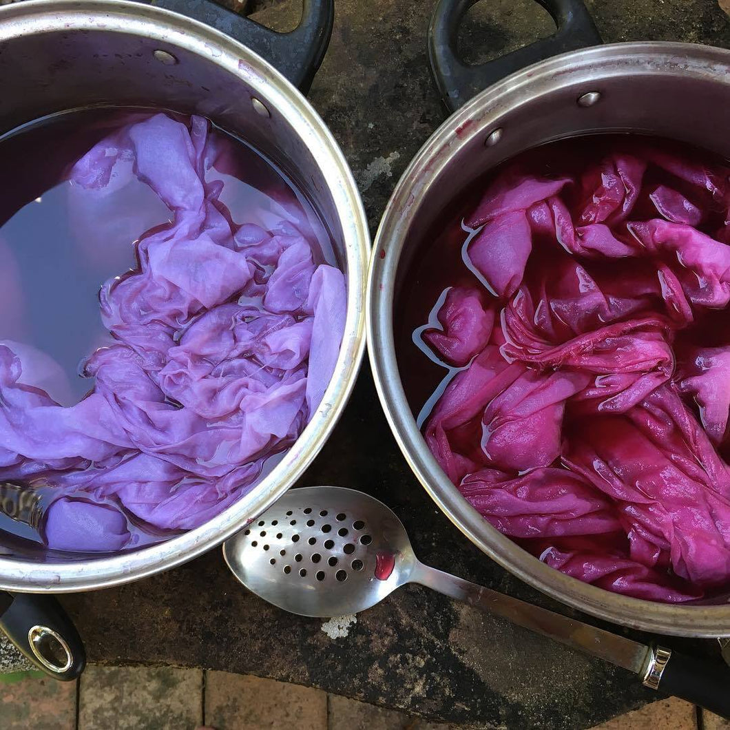 Introduction to Botanical Dyeing- Extraction Method  20th of June  2021
