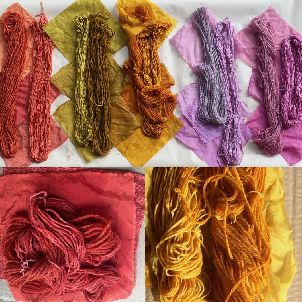Introduction to Botanical Dyeing- Extraction Method 22nd November 2020