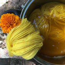 Load image into Gallery viewer, Introduction to Botanical Dyeing- Extraction Method  25th of April  2021