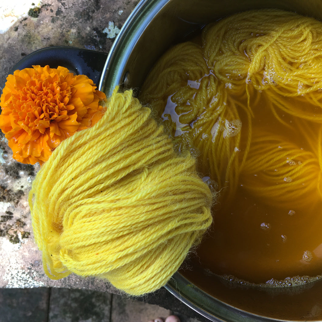 Introduction to Botanical Dyeing- Extraction Method  25th of April  2021