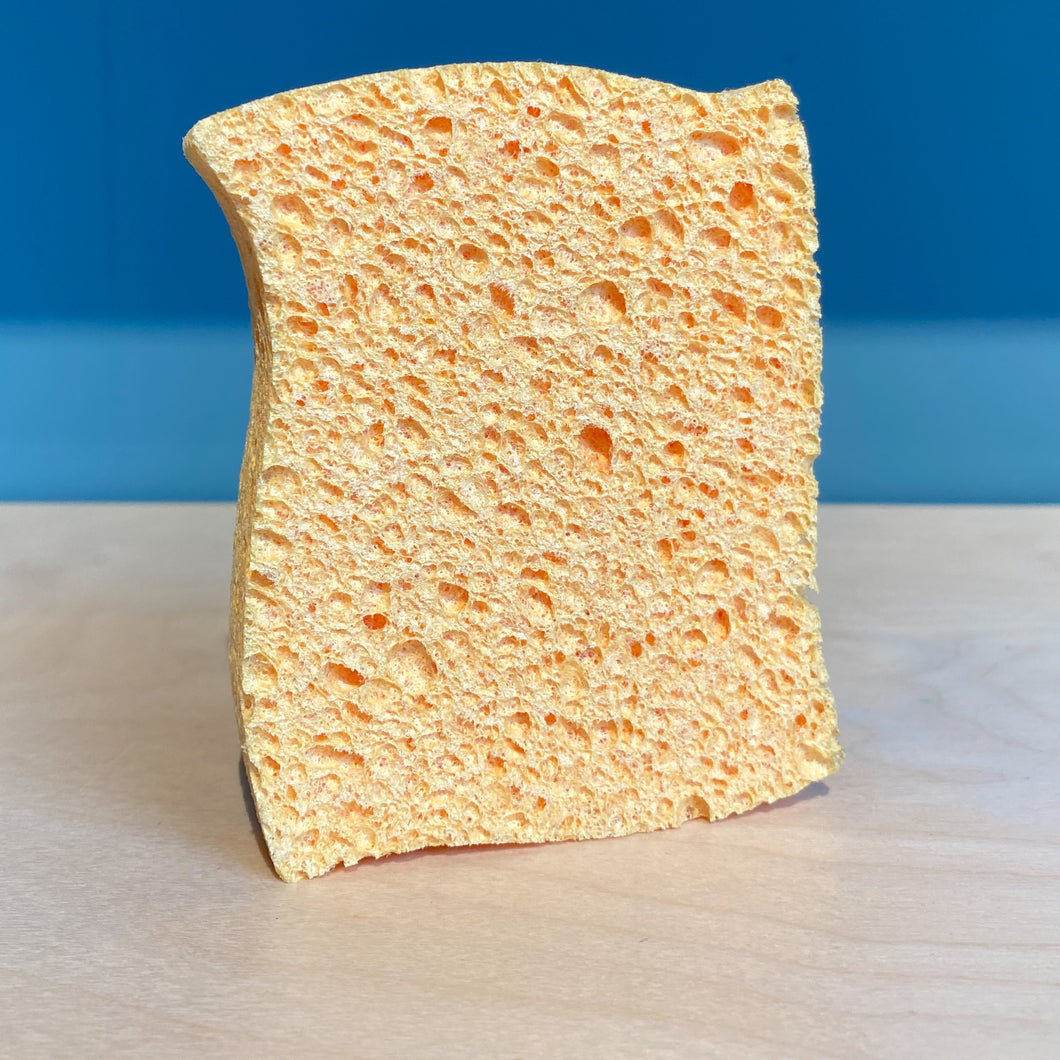 Biodegradable Sponge