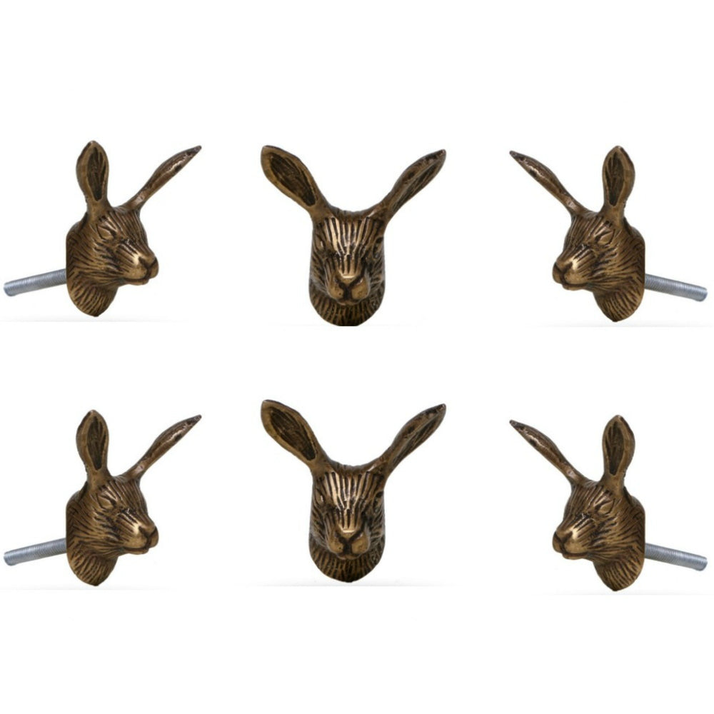 Set of six Reno Brass Rabbit Knobs