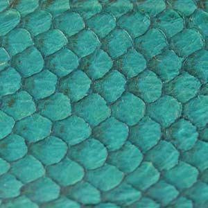 Fish Leather Turquoise