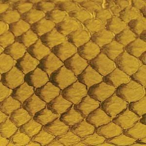 Leather  - Fish Leather Yellow