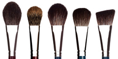 Makeup Brush Set: Last Looks