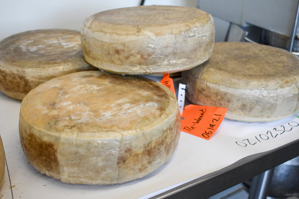 cheese aged in cloth