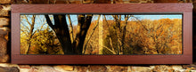"Load image into Gallery viewer, BC72 | 72""x24""x24"" / 6'x2'x2' PVC Reptile Enclosure"
