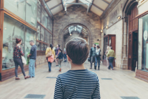 Boy stood with his back to the camera. He's looking forwards at the museum which is ahead of him