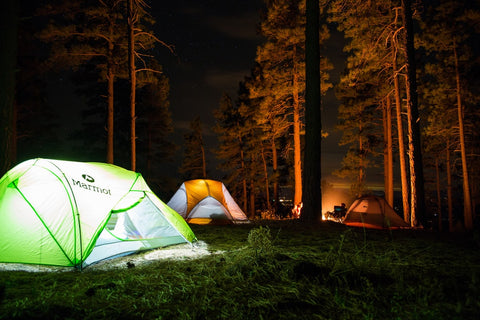 A green tent which is lit up from inside. The tent is in a forest and it is night time
