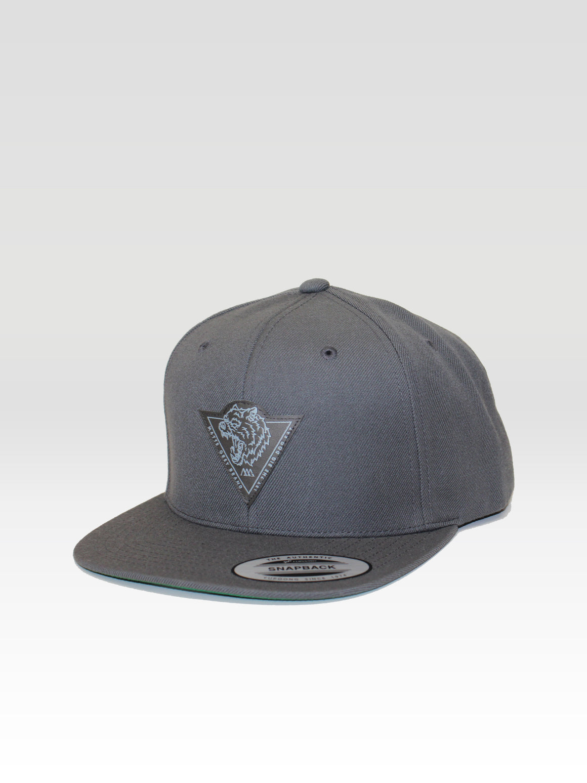 Big Dog Tri Snapback - Brand Grey (Brand Grey / Ice Blue)