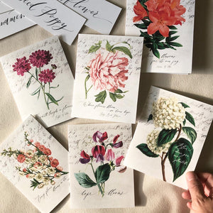 Vintage Floral Greeting Cards - Set of 6
