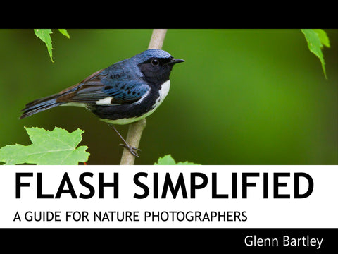 Flash Simplified: A Guide for Nature Photographers