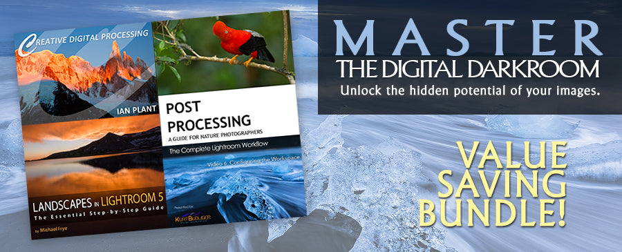 Digital Darkroom Mastery