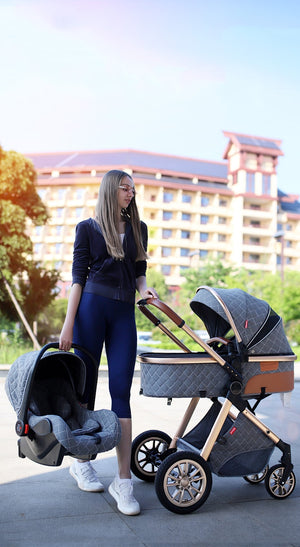 Babyified High Landscape Stroller and Car Seat
