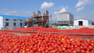 5 Business Ideas To Start Your Food Manufacturing Business in Africa