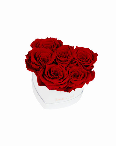 Infinity Heart Rosebox | Romantic Red | Gr. M - Jardin Ciel GmbH