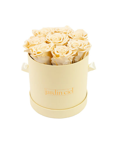 Infinity Rose, Champagner, Beige Flowerbox Small