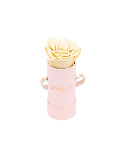 Infinity Rose,Champagner Flowerbox Pink
