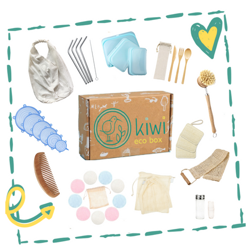 Kiwi Eco Box | All-in Zero-Waste Starter Kit - Sage & Barrel