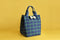 Lunch Bag/ Multipurpose Bag (Blue and Green Checks)