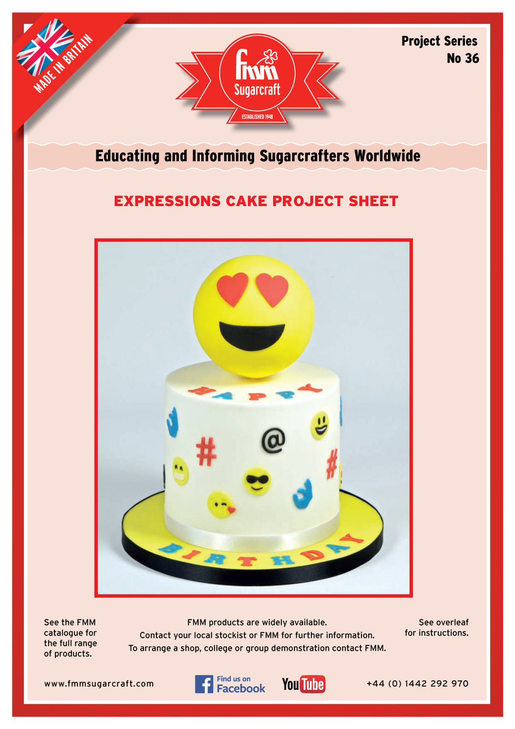 FMM Expressions Cake Project Sheet