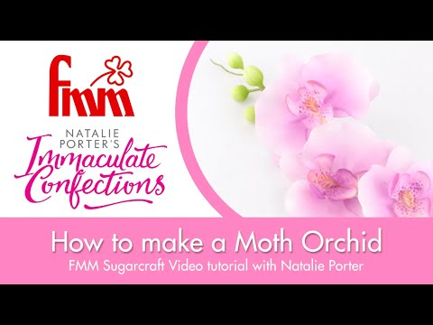 Moth Orchid Tutorial from Natalie Porter