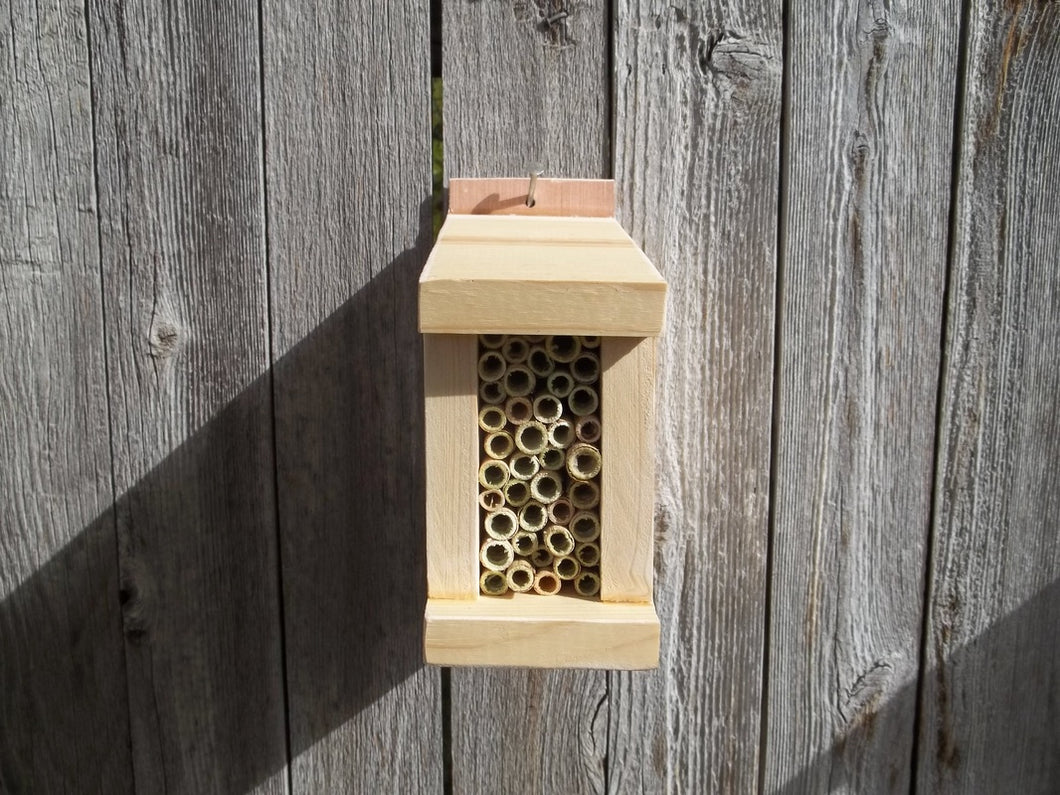 LEAF CUTTER BEE STARTER HOUSE /  5 REEDS OF LEAF CUTTER BEES INCLUDED
