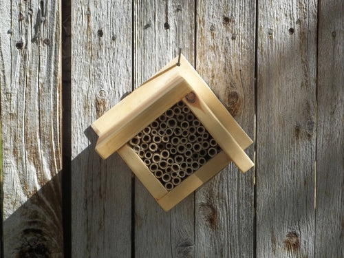 DIAMOND MASON BEE HOUSE #1