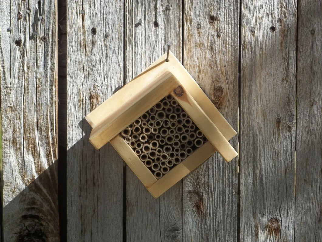 DIAMOND MASON BEE HOUSE   /    WITHOUT BEES