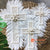 SHL056-6 SET OF THREE WHITE FEATHER AND SHELL CROSS DECORATIONS