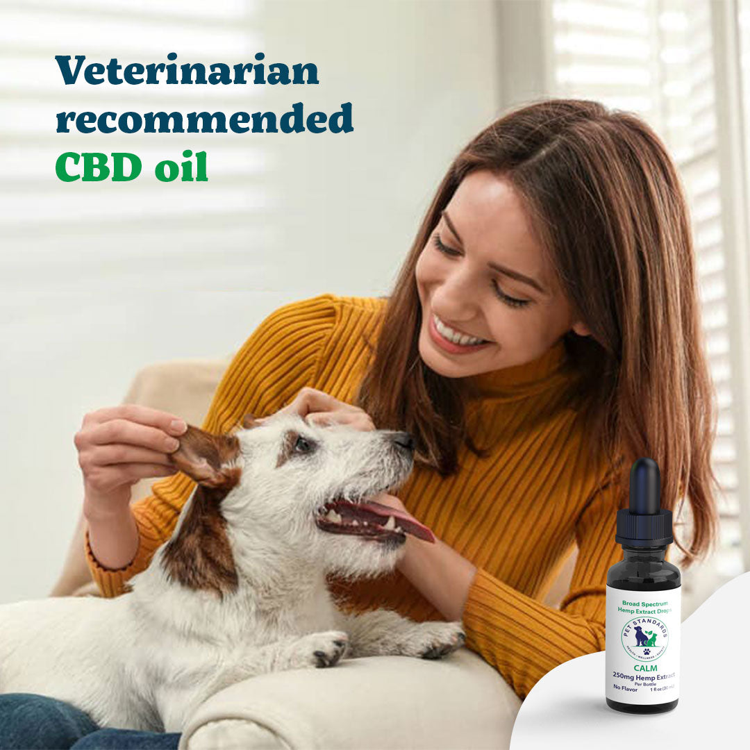 Calm CBD Oil for Dogs