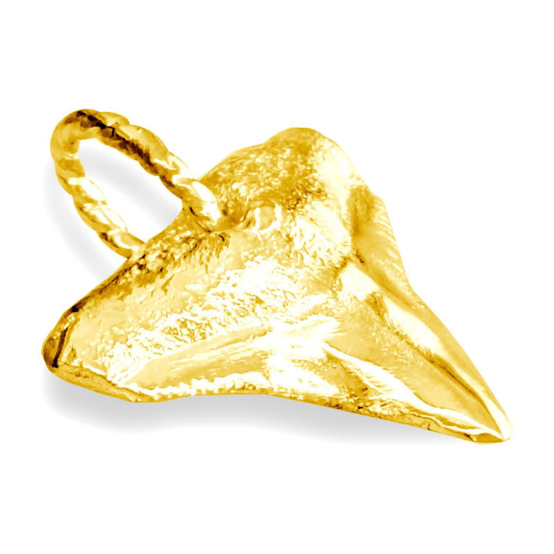 Medium Shark Tooth Charm in 14k Yellow Gold