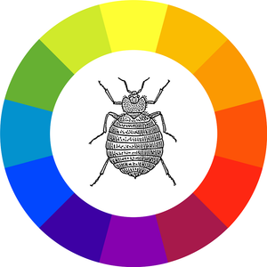 Bed Bugs Favorite Color
