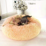impact-wireless Yellow / 50cm CALMING PET BED