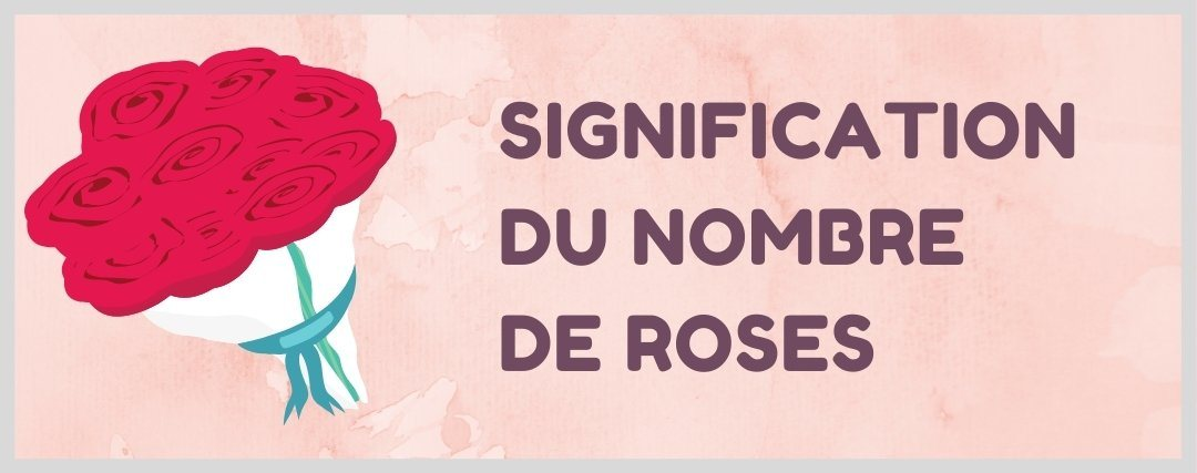 signification nombre de rose