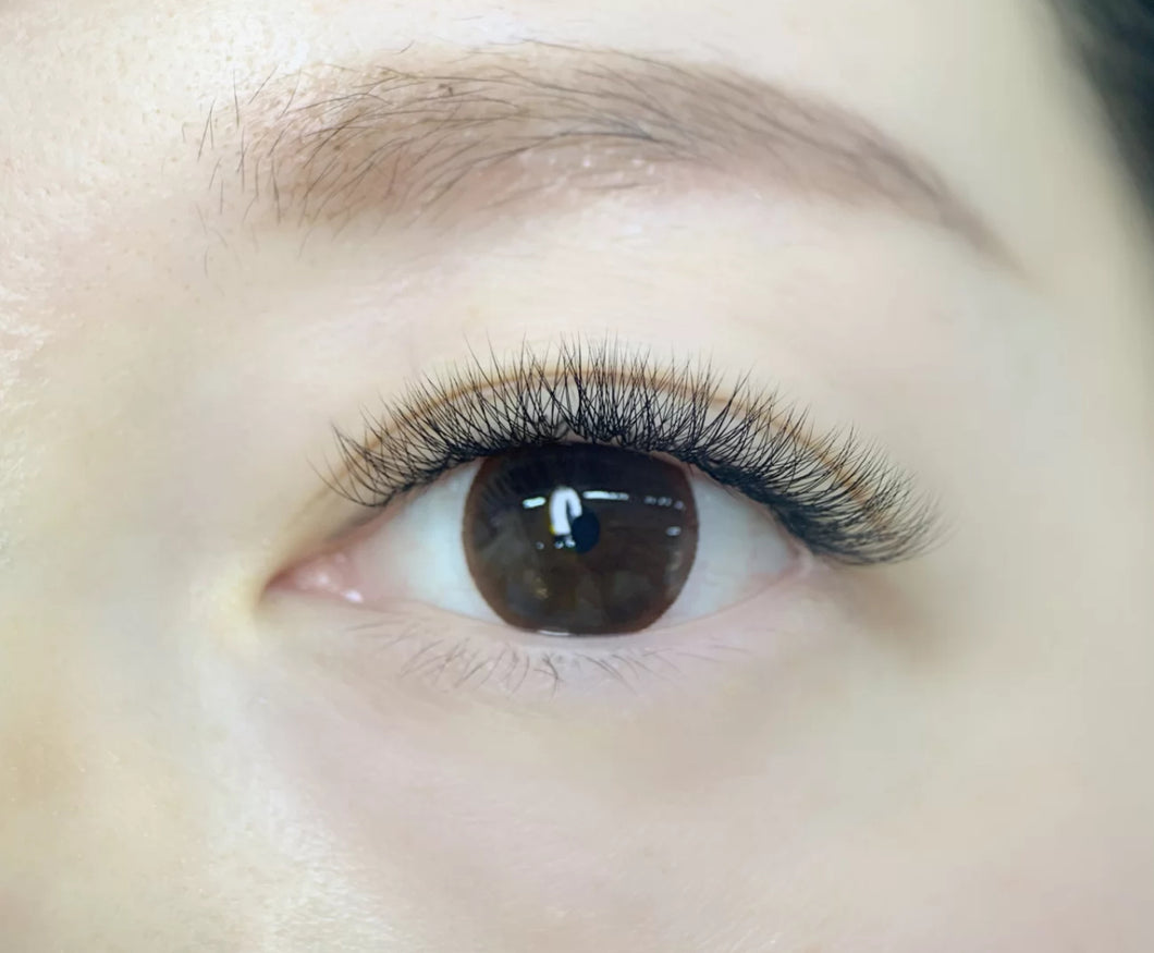 Volume (3D) eyelash extension- Refill