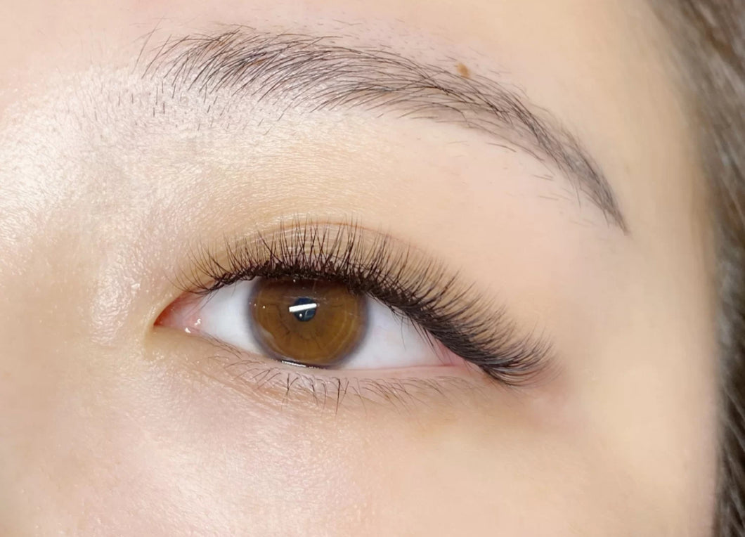 Blended (2D) eyelash extension -Refill