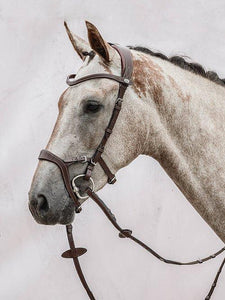 Nirak - PS Bridles