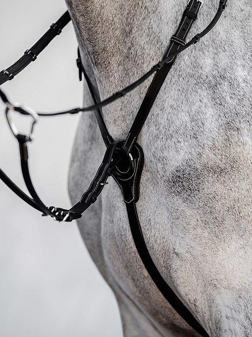 Martingale SEOUL - PS Bridles