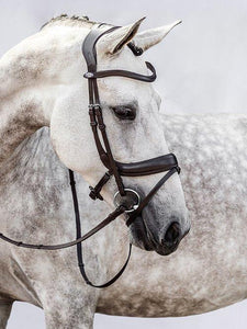 Palladin - PS Bridles