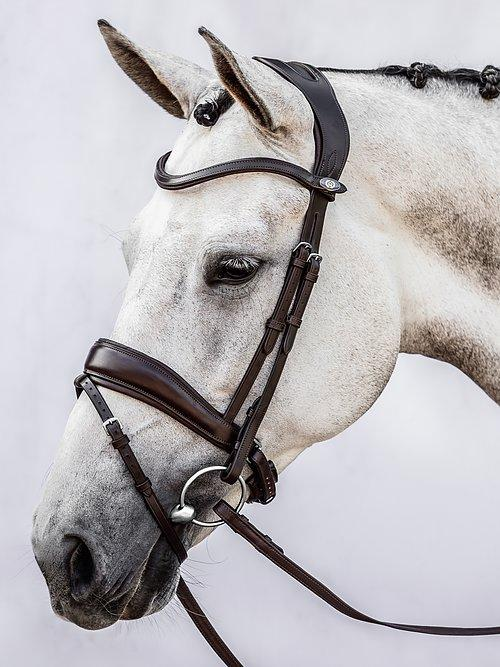 Flying Change - PS Bridles
