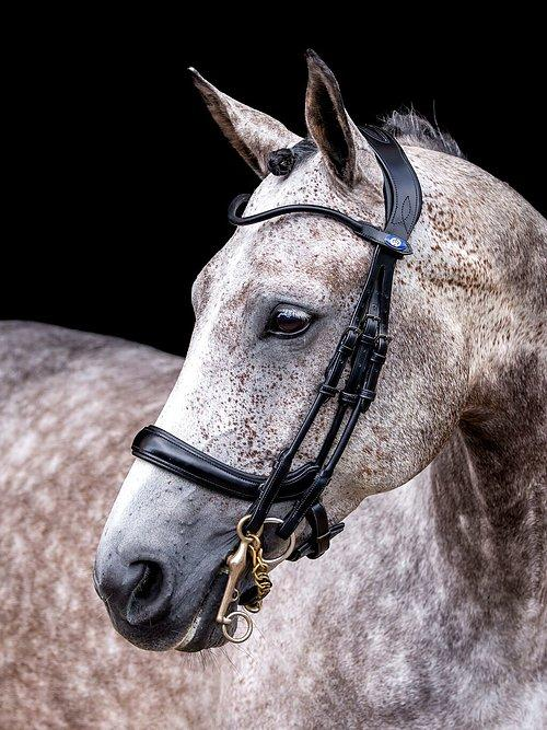 Double Bridle PARRAGON - PS Bridles