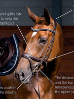 Load image into Gallery viewer, Jump Off Revolution - PS Bridles