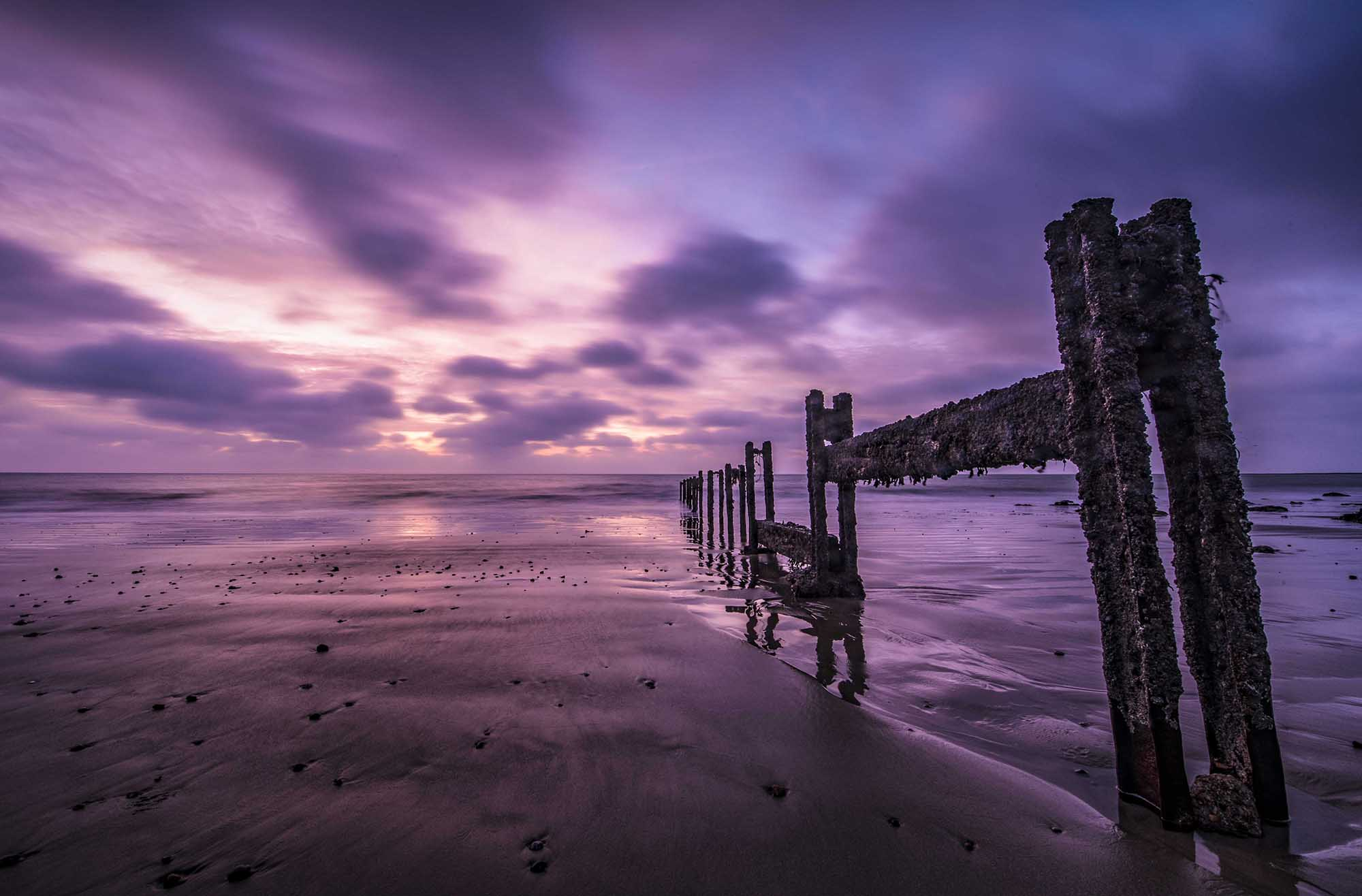 Purple Sunrise at The Warren