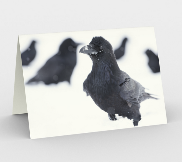 Raven Greeting Card, 5x7 -  My Flock