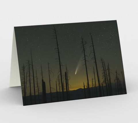 Nature Greeting Card, 5x7 - Comet NEOWISE Through Trees
