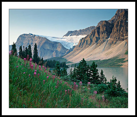 Limited ed. Nature Print - View from Banff Jasper Hwy, B.C., Canada